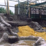 Gorilla Enclosure 2