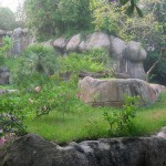 Gorilla Enclosure 24