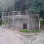 Gorilla Enclosure 34